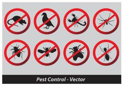 Control de plagas en comunidades de vecinos